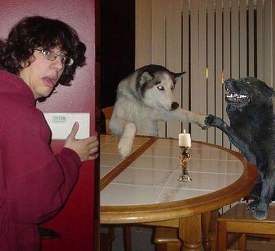 犬と離れられない人々21