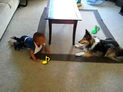 子守する犬