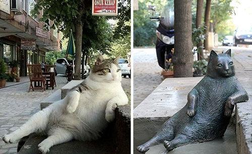 クールな猫の銅像が建つ03