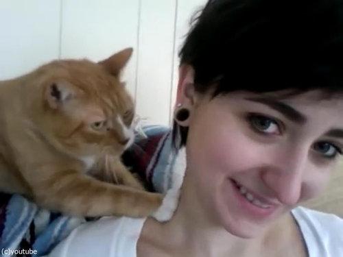 献身的な猫、飼い主の女性の肩をモミモミ05