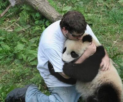 さよならパンダ01