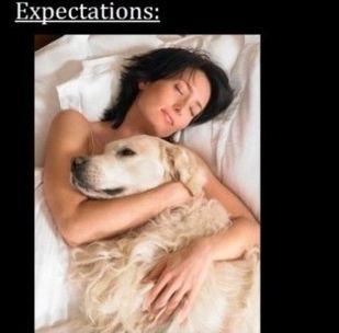 ペットと寝る理想と現実01