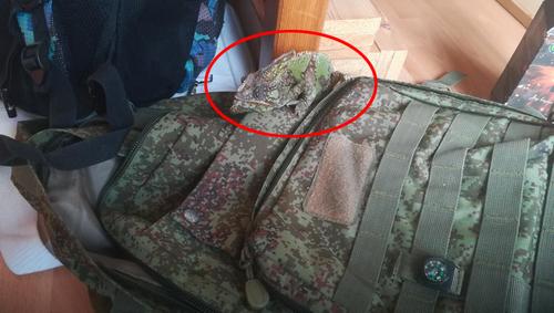 カメレオンがミリタリーバッグに隠れている02
