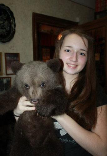 ロシアのクマ16