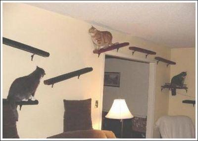 猫用の足場02