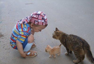 赤ちゃんとペット13