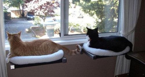 猫の家具17