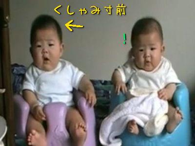 くしゃみする双子