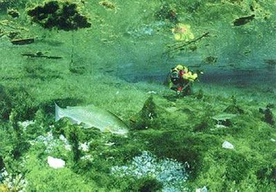 グリーン湖07