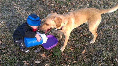 息子と愛犬の友情20
