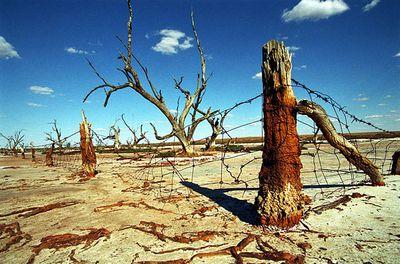 オーストラリアの干ばつ04