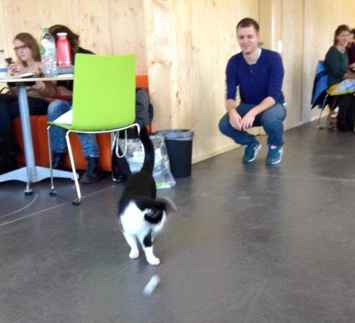 ドイツの大学で暮らす猫06
