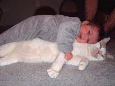 赤ちゃんとペット00