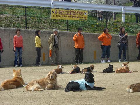 2008.3犬文字