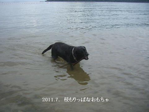 2011.7.琵琶湖3