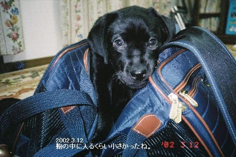 2002.7