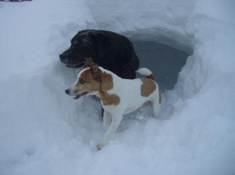 2012.1雪遊び