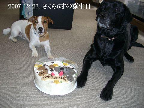 2007.12.6才の誕生日