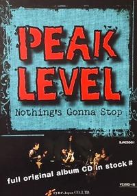 peaklevel flyer front