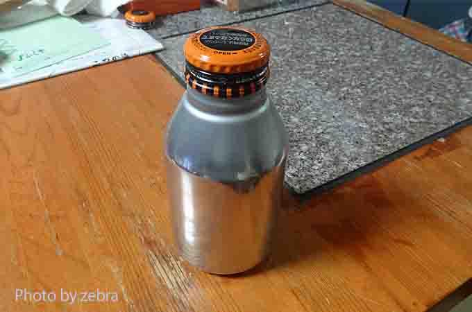 zebra-00300