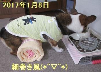 s-IMG_0858-hikaku
