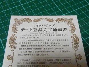 01_DSCN3808_314_20160317