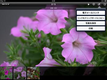 DS_photo_iOS07