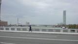 万代橋から柳都大橋と朱鷺メッセ