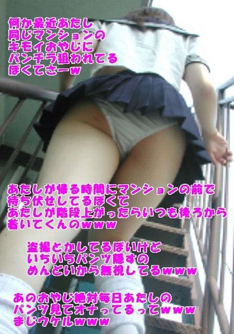 com_p_i_n_pinkimg_20111114mkg02