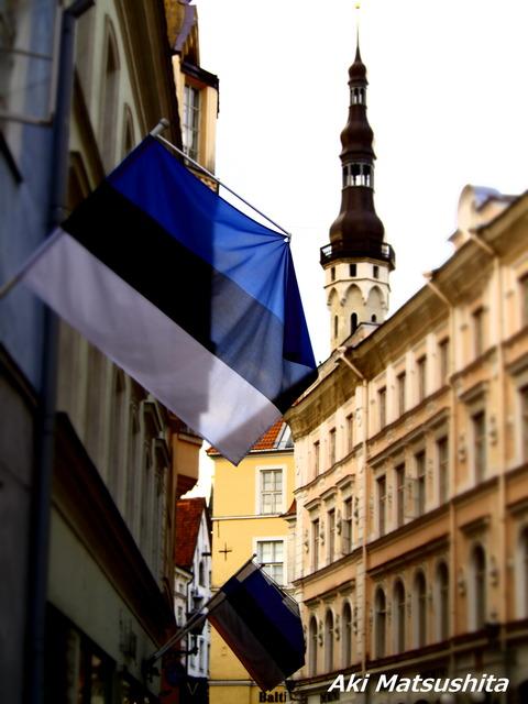 エストニアを留学先に選んだ理由。 Miks ma läksin Eestisse õppima?