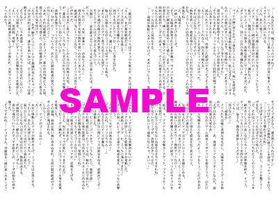 ファフニール5特典(ゲーマーズ)2