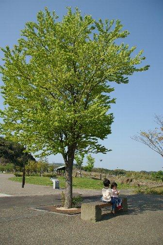 shimane2001