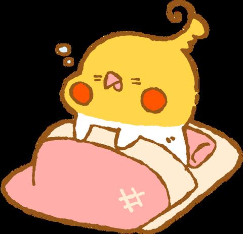 【フリー素材】寝ぼけてウトウトオカメインコ