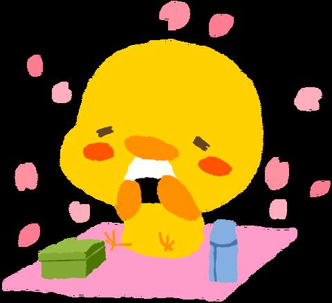 【フリー素材】お花見ひよこ