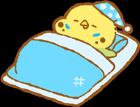 【フリー素材】布団でおやすみセキセイインコ