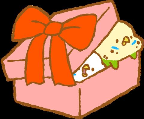 【フリー素材】プレゼントぎちぎちセキセイインコ