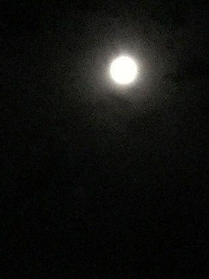 高崎の月亮_2017