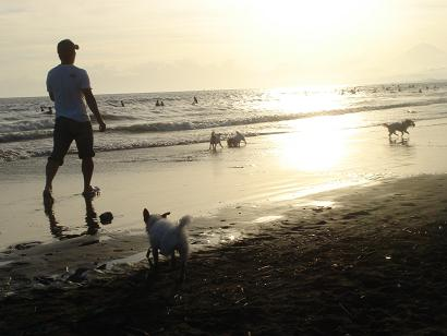 夕日の海遊び