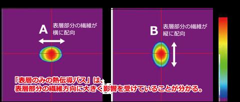 炭素繊維強化プラスチックの熱伝導観察_5Hzの場合