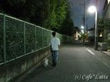 10/08/11 お散歩風景(1)