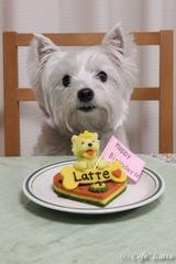 11/03/20 ケーキとラテ(ラテパパ撮影)