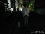 10/08/11 お散歩風景(3)