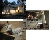 10/08/13 軽井沢の旅:DOG GARDEN RESORT軽井沢さんにて