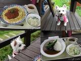 10/08/13 軽井沢の旅:軽井沢スノーパーク〜昼食