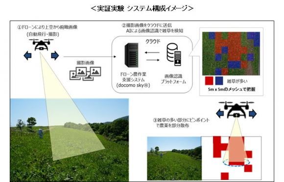 ドローンとAIによる画像認識技術を活用し効率的な牧草生産の実証実験