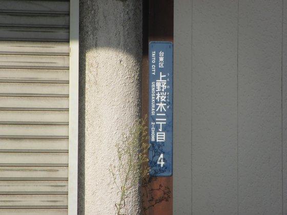 776b46b8.jpg