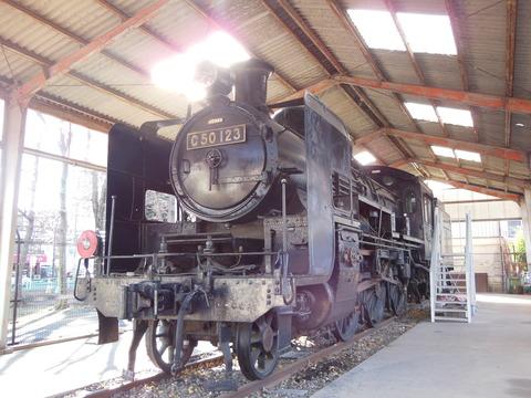 DSCN5313
