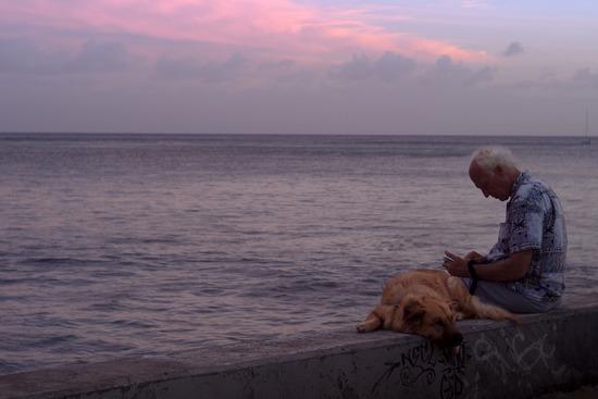 #撮 オアフ島に行ってきた