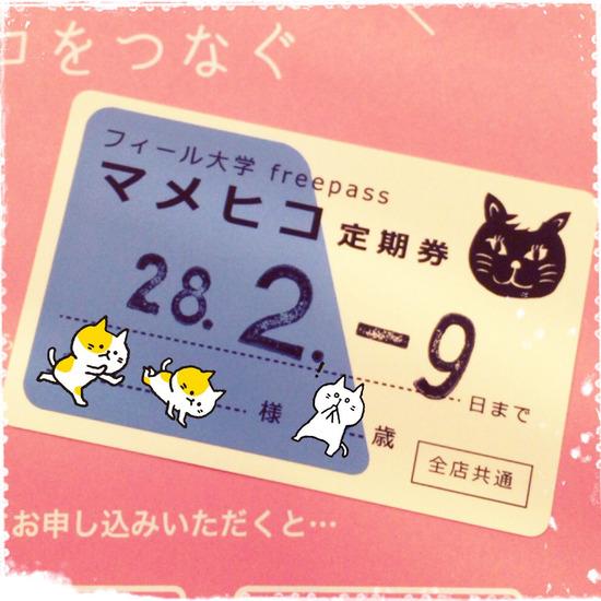 #食 渋谷、三茶によく来る人に勧めたい マメヒコ定期券 の話