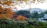 銀閣寺 No.1